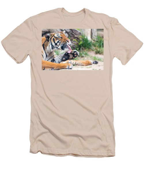 Malayan Tiger Grooming Men's T-Shirt (Athletic Fit)