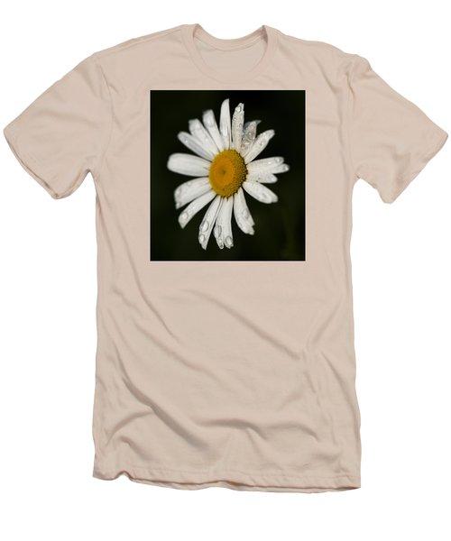 Morning Daisy Men's T-Shirt (Slim Fit) by Dan Hefle