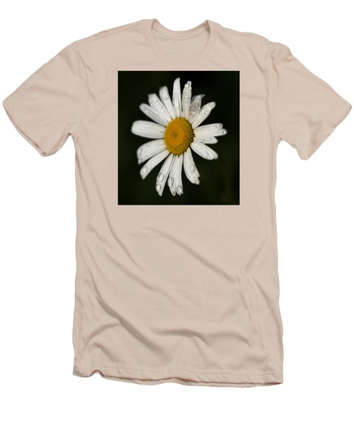 Morning Daisy Men's T-Shirt (Athletic Fit)