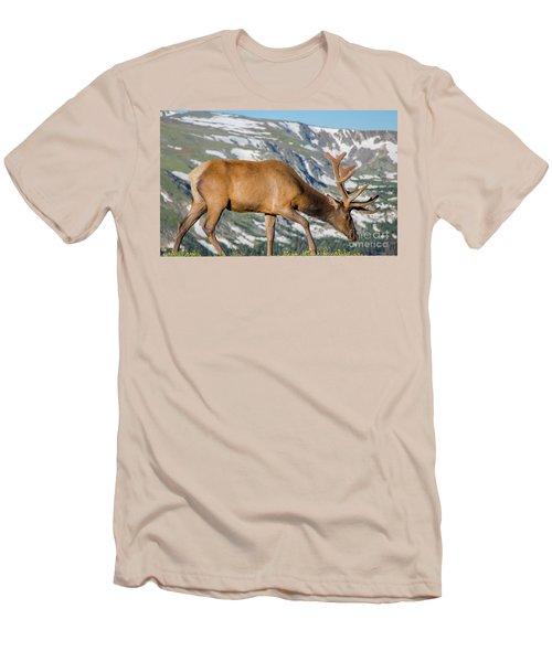 Mountain Top Elk Men's T-Shirt (Slim Fit) by John Roberts