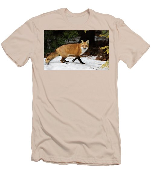Men's T-Shirt (Slim Fit) featuring the photograph Mr Fox by Mircea Costina Photography