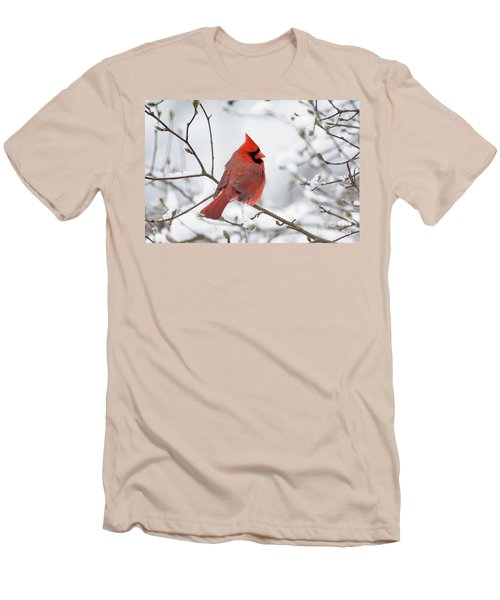 Northern Cardinal - D001540 Men's T-Shirt (Athletic Fit)