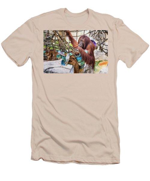 Orangutan In Rope Net Men's T-Shirt (Slim Fit) by Stephanie Hayes