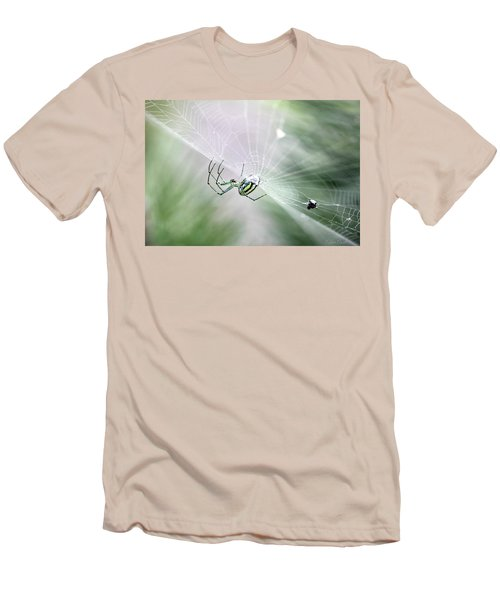 Men's T-Shirt (Athletic Fit) featuring the photograph Orchard Orbweaver Spider  by Trina Ansel