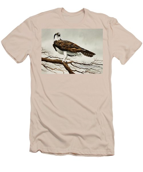 Osprey Sea Hawk Men's T-Shirt (Slim Fit) by James Williamson