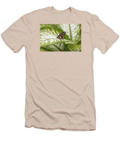 Papilio Demoleus Men's T-Shirt (Slim Fit) by Goyo Ambrosio