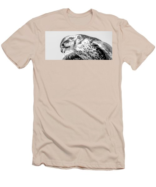 Peregrine Falcon In Black And White Men's T-Shirt (Athletic Fit)