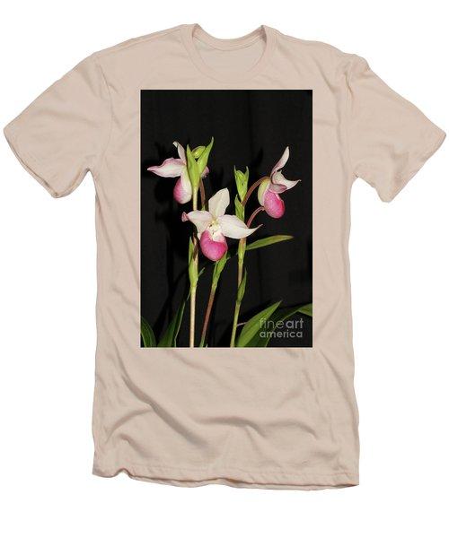 Phragmipedium Cardinale Wacousta Orchid Men's T-Shirt (Athletic Fit)