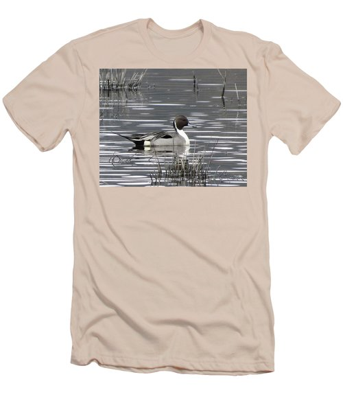 Pintail Duck Men's T-Shirt (Athletic Fit)