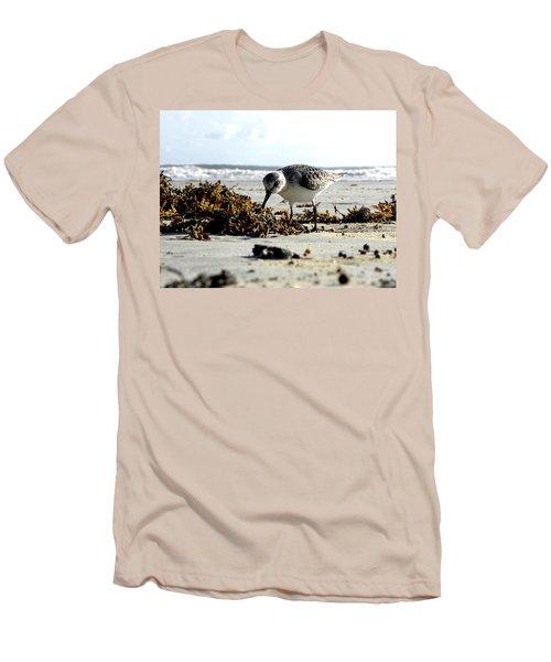 Plover On Daytona Beach Men's T-Shirt (Slim Fit) by Chris Mercer