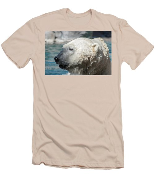 Polar Bear Club Men's T-Shirt (Athletic Fit)