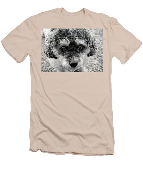 Poodle Eyes Men's T-Shirt (Athletic Fit)
