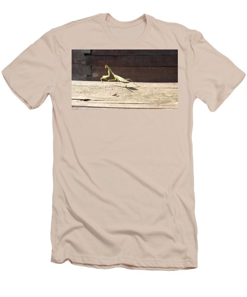 Praying Mantis  Men's T-Shirt (Athletic Fit)