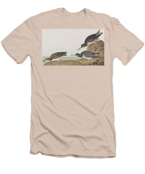 Purple Sandpiper Men's T-Shirt (Slim Fit) by John James Audubon