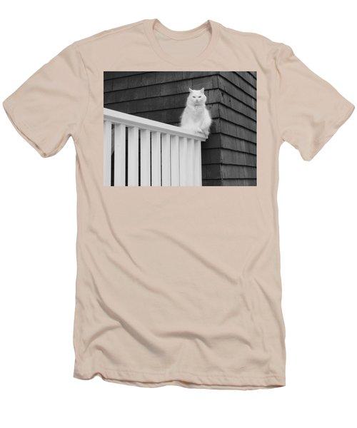 Pussy Cat Men's T-Shirt (Athletic Fit)