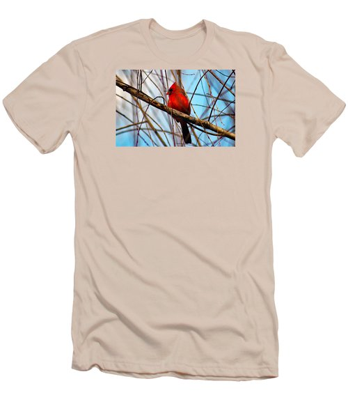 Red Bird Sitting Patiently Men's T-Shirt (Athletic Fit)