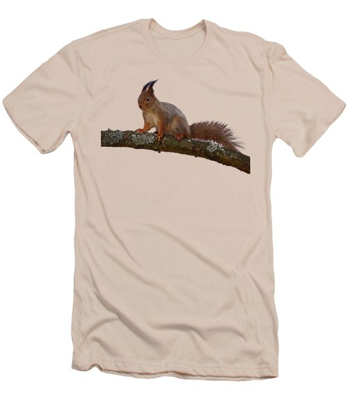 Red Squirrel Transparent Men's T-Shirt (Athletic Fit)