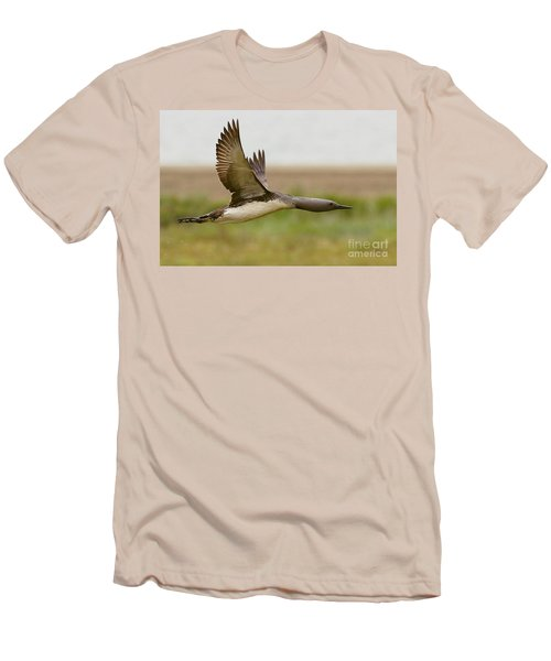 Red-throated Loon In Flight Men's T-Shirt (Athletic Fit)