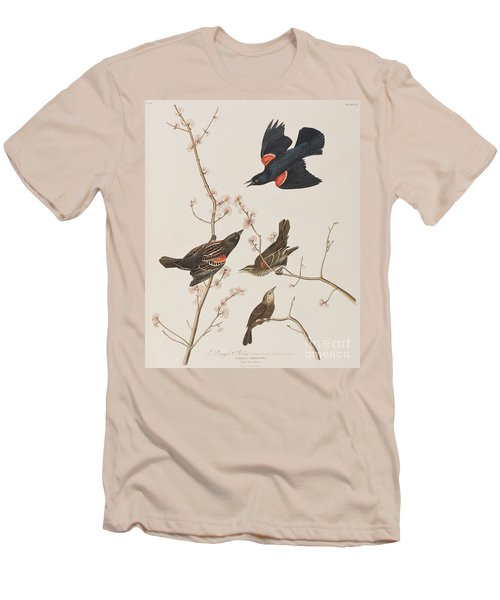 Red Winged Starling Or Marsh Blackbird Men's T-Shirt (Athletic Fit)