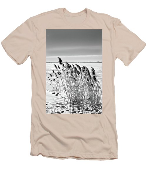 Reeds On A Frozen Lake Men's T-Shirt (Athletic Fit)