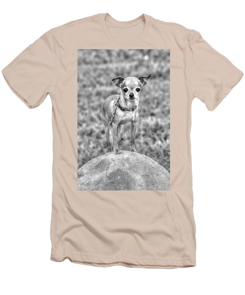 Rock Star Men's T-Shirt (Athletic Fit)