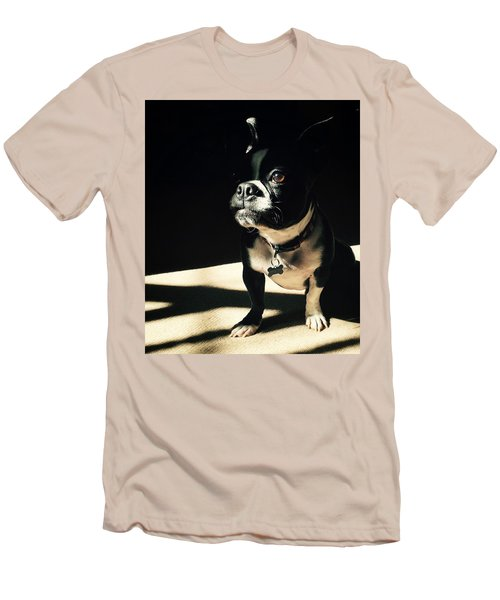 Men's T-Shirt (Slim Fit) featuring the photograph Rocky by Sharon Jones