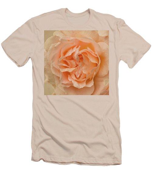 Romantic Rose Men's T-Shirt (Slim Fit) by Jacqi Elmslie