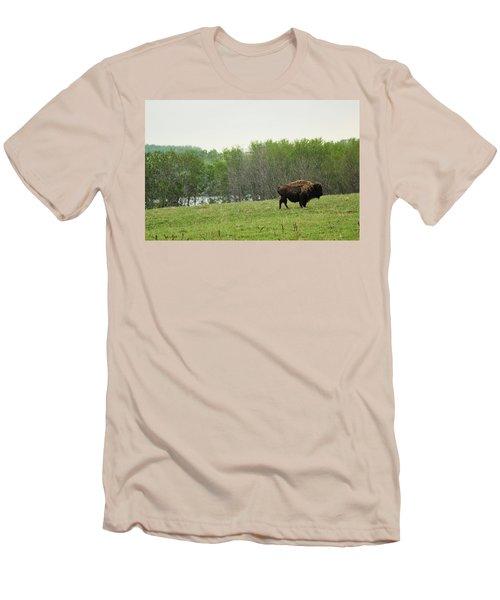 Men's T-Shirt (Slim Fit) featuring the photograph Saskatchewan Buffalo by Ryan Crouse
