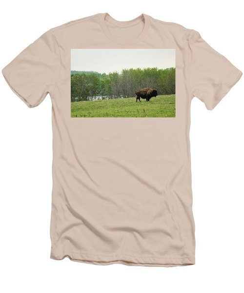 Saskatchewan Buffalo Men's T-Shirt (Athletic Fit)