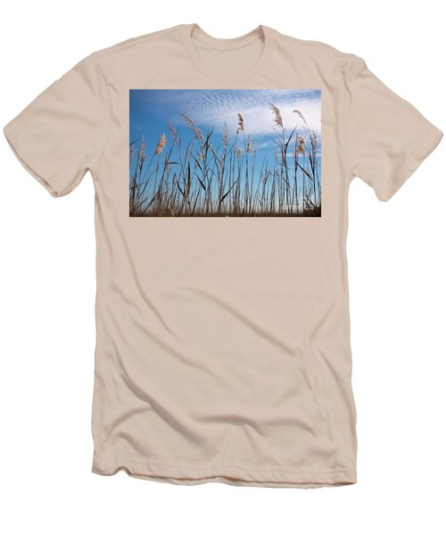 Sea Oats And Sky On Outer Banks Men's T-Shirt (Slim Fit) by Dan Carmichael