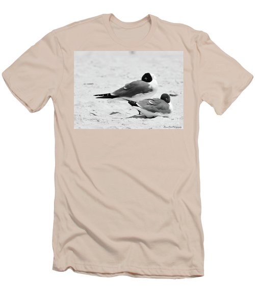 Seagull Nap Time Men's T-Shirt (Athletic Fit)