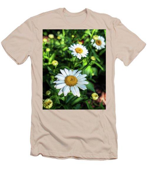 Shasta Daisy Men's T-Shirt (Slim Fit) by Robert FERD Frank
