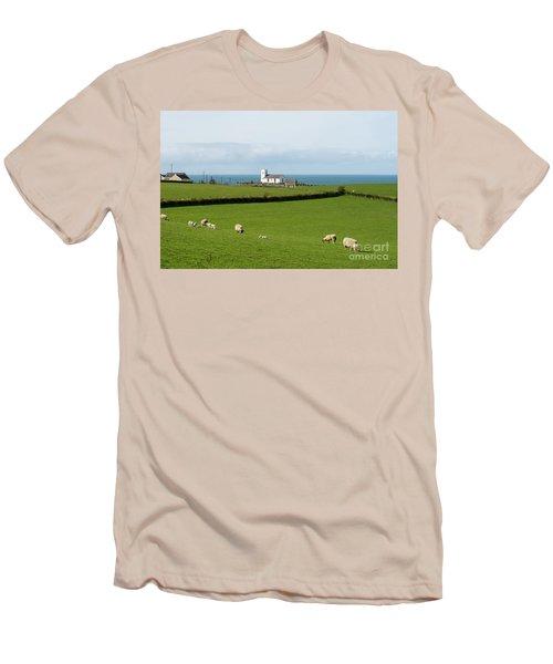 Men's T-Shirt (Slim Fit) featuring the photograph Sheep Grazing On Irish Coastline by Juli Scalzi