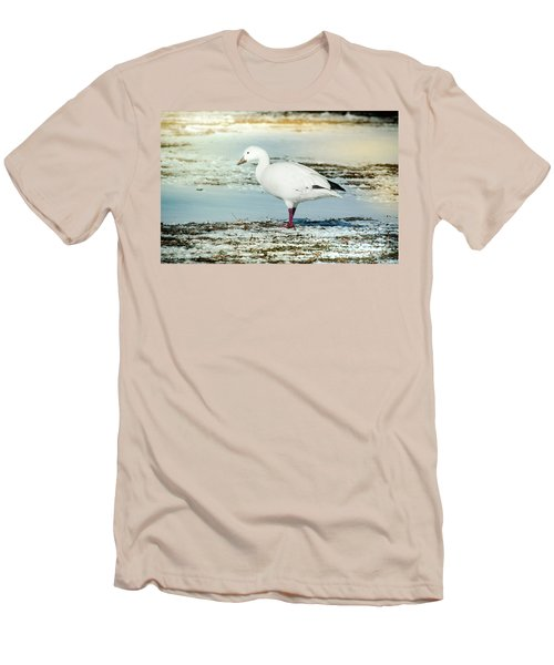 Snow Goose - Frozen Field Men's T-Shirt (Slim Fit) by Robert Frederick