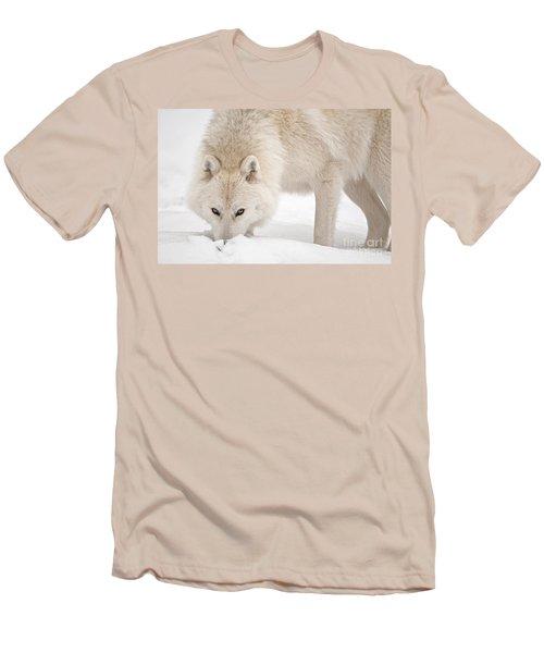 Snow Nose Men's T-Shirt (Athletic Fit)