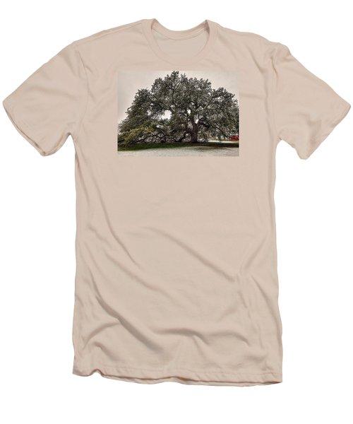 Snowfall On Emancipation Oak Tree Men's T-Shirt (Slim Fit) by Jerry Gammon