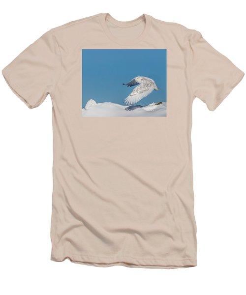 Snowy Owl - Taking Flighty Men's T-Shirt (Slim Fit) by Dan Traun