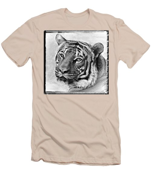 Sometimes Less Is More Men's T-Shirt (Athletic Fit)