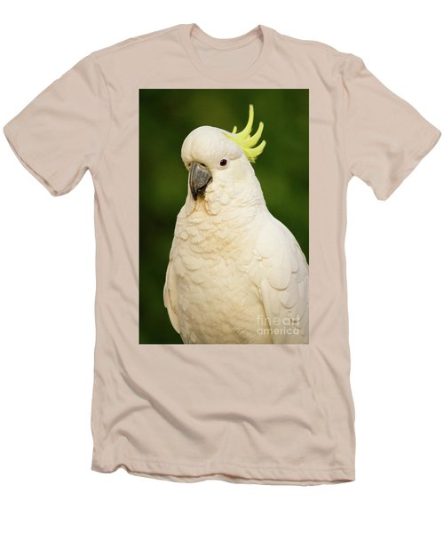 Sulphur Crested Cockatoo Men's T-Shirt (Slim Fit) by Craig Dingle