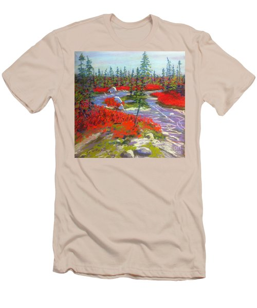 Susie Lake Barrens Men's T-Shirt (Slim Fit) by Rae  Smith