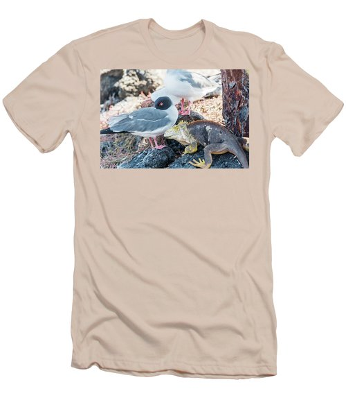 Swallow Tailed Gull And Iguana On  Galapagos Islands Men's T-Shirt (Slim Fit) by Marek Poplawski