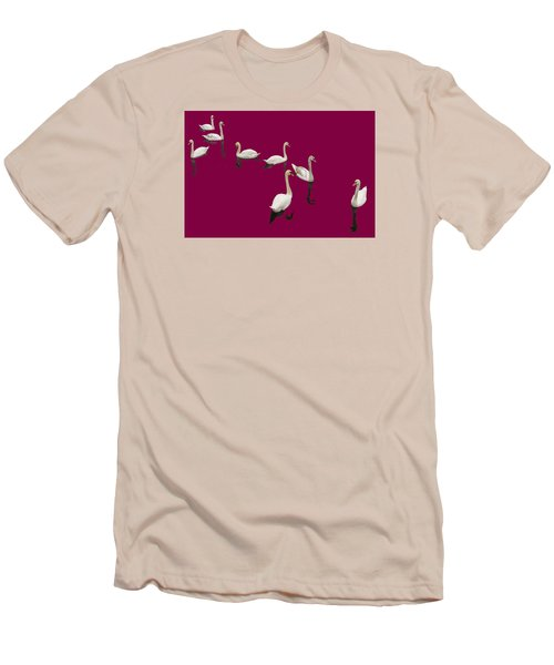 Swan Family On Burgandy Men's T-Shirt (Slim Fit) by Constantine Gregory