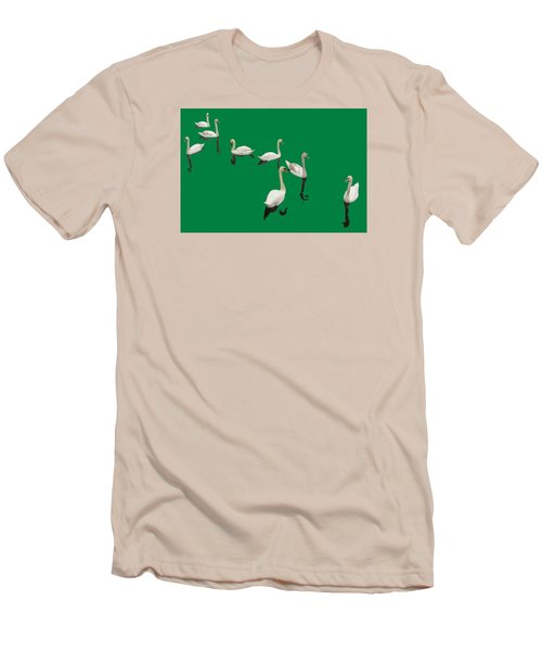 Swan Family On Green Men's T-Shirt (Slim Fit) by Constantine Gregory