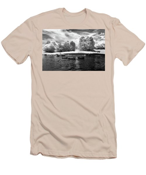 Swimming With Cows II Men's T-Shirt (Slim Fit) by Paul Seymour
