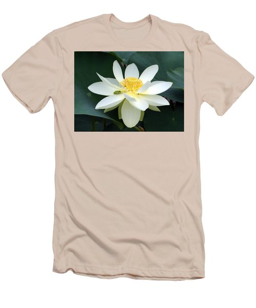 The Lotus Flower The Frog And The Bee Men's T-Shirt (Athletic Fit)
