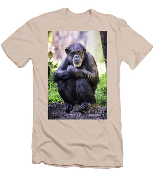 Thoughtful Chimpanzee  Men's T-Shirt (Slim Fit) by Stephanie Hayes