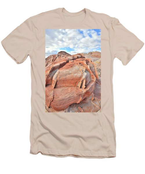 Top Of The World At Valley Of Fire Men's T-Shirt (Slim Fit) by Ray Mathis