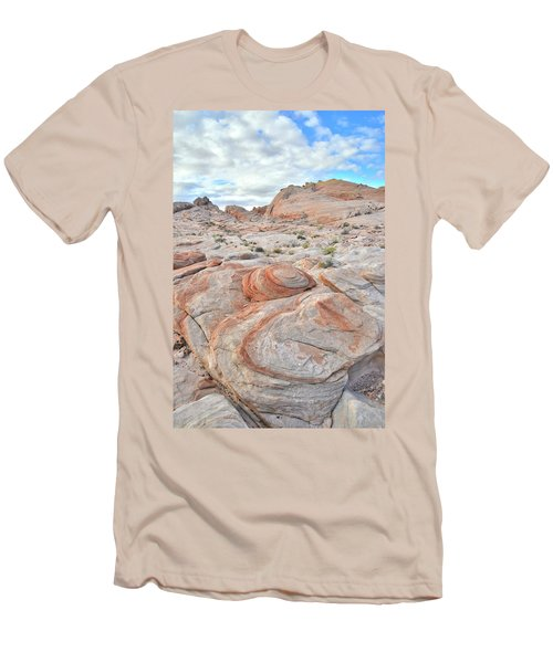 Valley Of Fire Beehives Men's T-Shirt (Slim Fit) by Ray Mathis