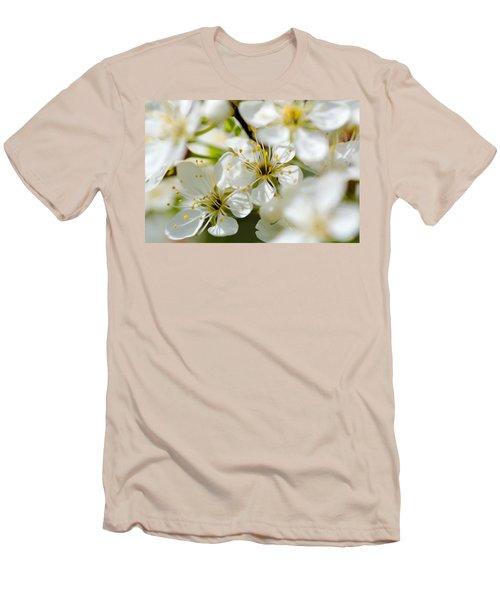 Vermont Apple Blossoms Men's T-Shirt (Athletic Fit)