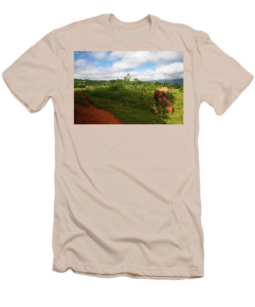Vinales Valley II Men's T-Shirt (Athletic Fit)